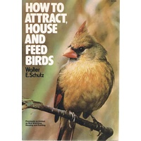 How To Attract, House And Feed Birds.
