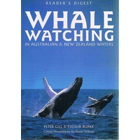 Whale Watching In Australia And New Zealand
