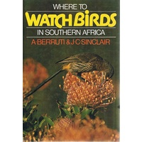 Where To Watch Birds In Southern Africa