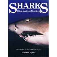 Sharks. Silent Hunters Of The Deep