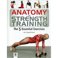 Anatomy Of Strength Training. The 5 Essential Exercises